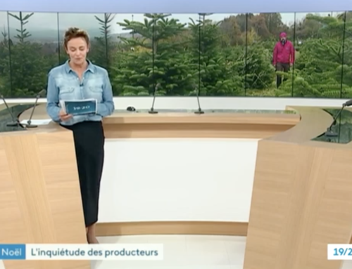 La Maison Pugin sur France 3 Alpes